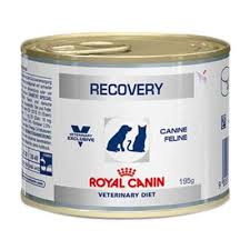 Recovery 195g - Cats/Dogs